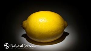 Lemon-650X