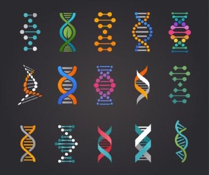 DNA-Spirals2